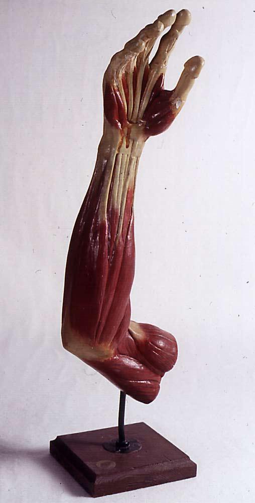 Bildergalerie | [Artonomia] Körper und Malerei
